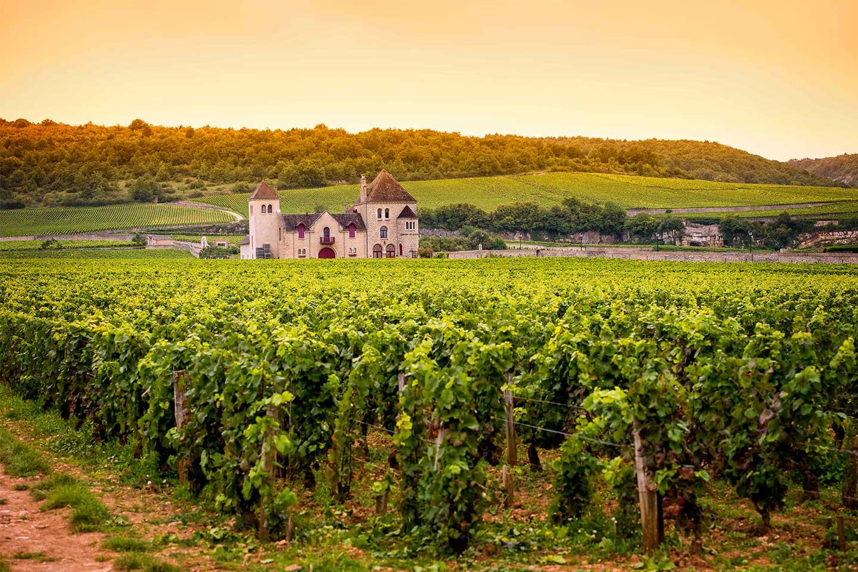 Burgundská ochutnávka